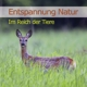 Entspannung Natur - Im Reich der Tiere