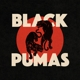 Black Pumas (Deluxe) (2CD)
