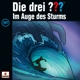 197/ Im Auge Des Sturms