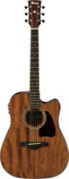 Ibanez AW 54 CE OPN ARTWOOD