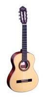 Ortega R 121 NT
