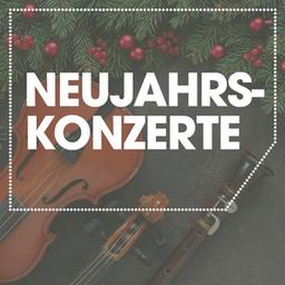 Neujahrskonzert - Mit internationalen Gesangssolisten