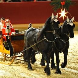 Neustädter Weihnachtsgala 2021 - Die märchenhafte Pferdeshow zum Fest!