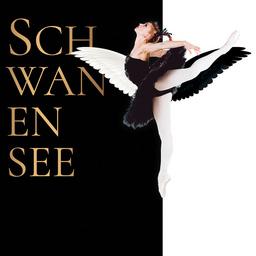 Schwanensee - Die traditionelle Wintertournee!
