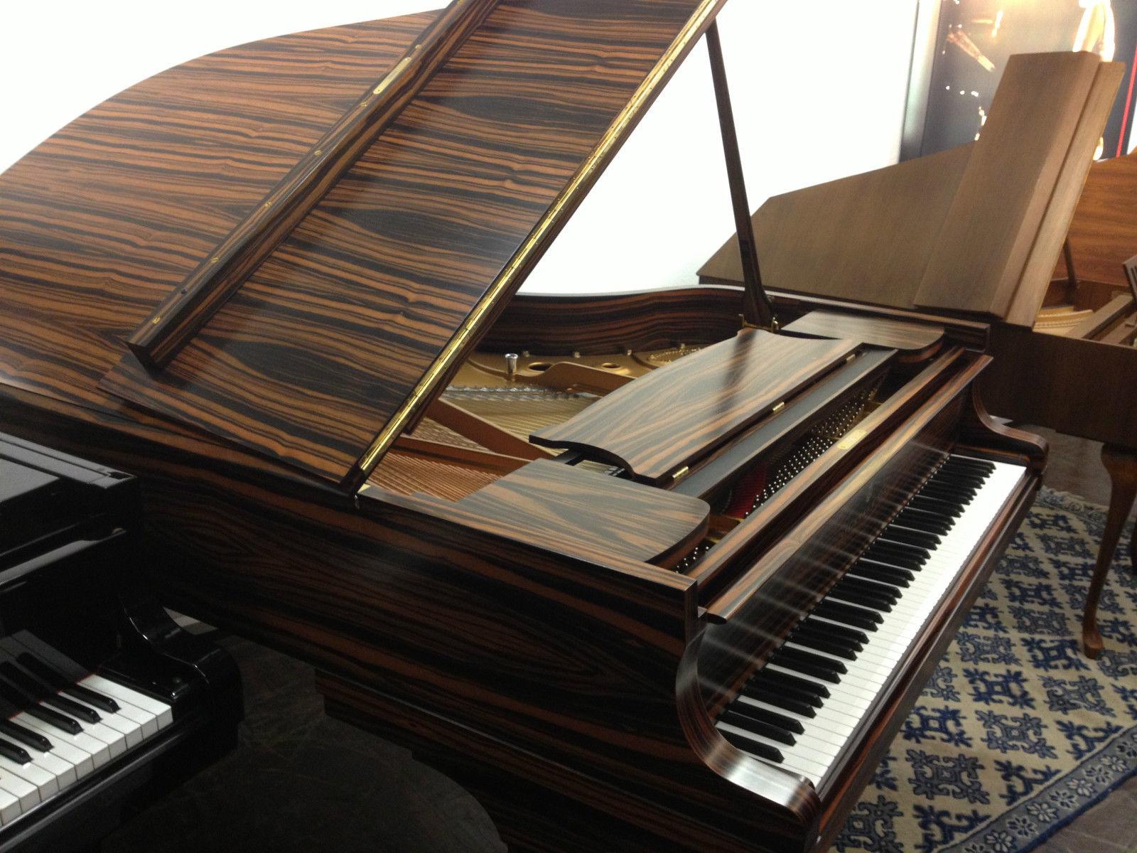 steinway sons a 188 fl gel makassar musikhaus schlaile karlsruhe. Black Bedroom Furniture Sets. Home Design Ideas